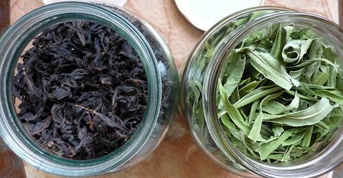 Иван-чай (ферментация листьев кипрея) - мастер-класс - ХЛЕБОПЕЧКА