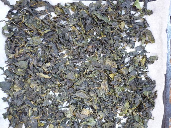 Листья вишни ферментировать